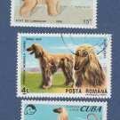 AFGHAN HOUND Postage Stamps Collectible Miniature Dog Art Portraits