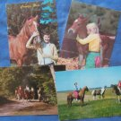 Girls and Horses Vintage  Postcards Riding, Equestrian, Country