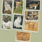 Cats Postage Stamps 1995 Vintage CTO, Sao Tome E. Principe, F - VF