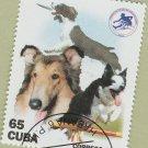 Collies Postage Stamp Dog Art Companion Animals Cuba / Caribbean