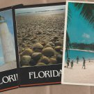 Lot of 3 FLORIDA Postcards Scenic Beach Lighthouse, Scenic