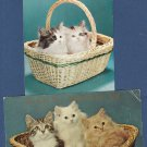 Kittens In Baskets Postcards Vtg Lot of 2 Cats Postmarked