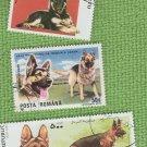 German Shepherd Alsatian Dogs Puppy Postage Stamp Collection CTO
