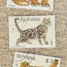 Three Cat Stamps Guyana Maine Coon Shorthair Abyssinian