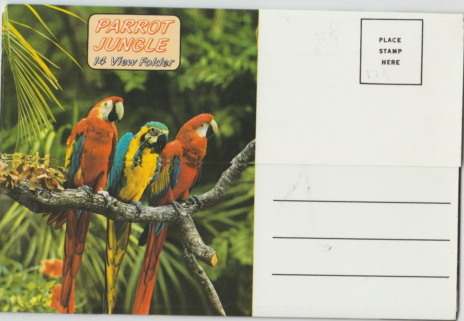 Parrot Jungle Postcard Folder Beautiful Birds Flamingos Macaws Miami Florida