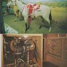 Four Postcards ROY ROGERS & DALE EVANS TRIGGER