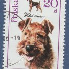 Welsh Terrier Dog / Canine Miniature Art Poland Postage Stamp