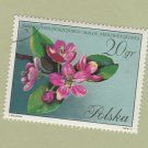 Poland Polska Stamp Used Floral 20 gr Crabapple Flowers Tree Blossoms