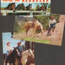 Lot of 3 Postcards Horses Greetings Texas, Arkansas, Nebraska