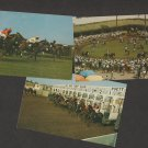 Horse Racing at Del Mar Thoroughbreds Lot of 3 Postcards