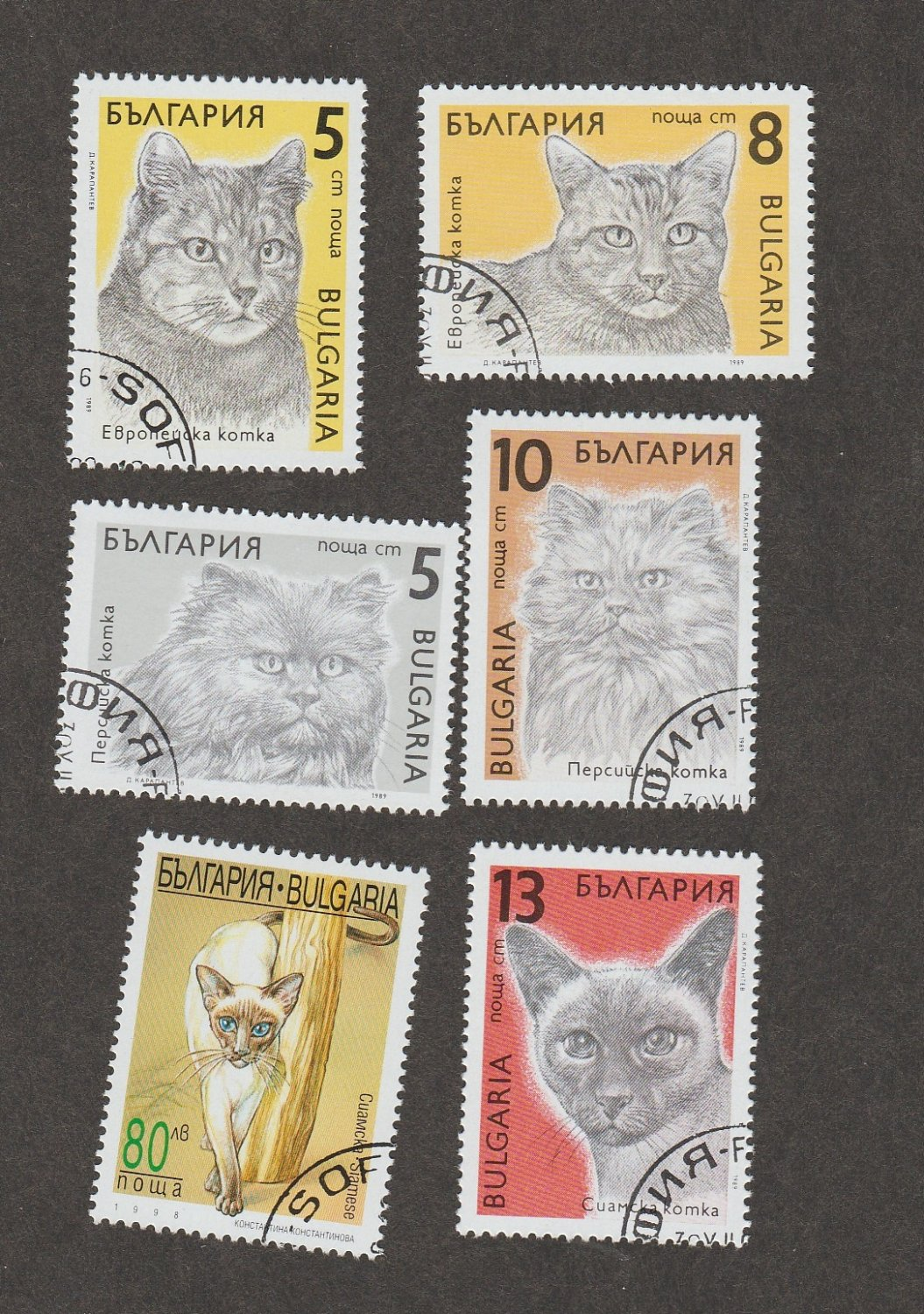 Bulgaria Postage Stamps CATS Lot of 6