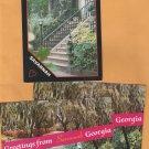 SAVANNAH GEORGIA Postcard Scenes Chrome Continental