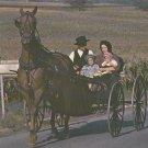 Amish Family Buggy Postcard Pennsylvania Dutch Horses