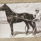 DAN PATCH POSTCARD HORSE STANDARDBRED PACER HARNESS RACING