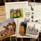 Appaloosa Horses Brochures, Clippings, Pedigrees