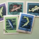 Poland Polska Fish Postage Stamps Used Selection Lot of 5