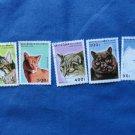 Colorful Cats Republique du Congo Postage Stamps Head Studies