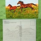 Running Mare & Foal, Horses,  Irene Hohe Photograph, German Postcard