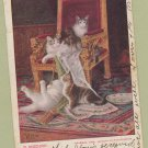 "Antique Postcard ""In Mischief"" Playful Cats, Kittens, Postmarked"