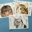 Colorful Cats, Postage Stamps, Afghan Post, Felines, Exotic Breeds