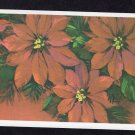 Poinsettia Postcard Merry Christmas / Happy New Year Holiday Flower Floral