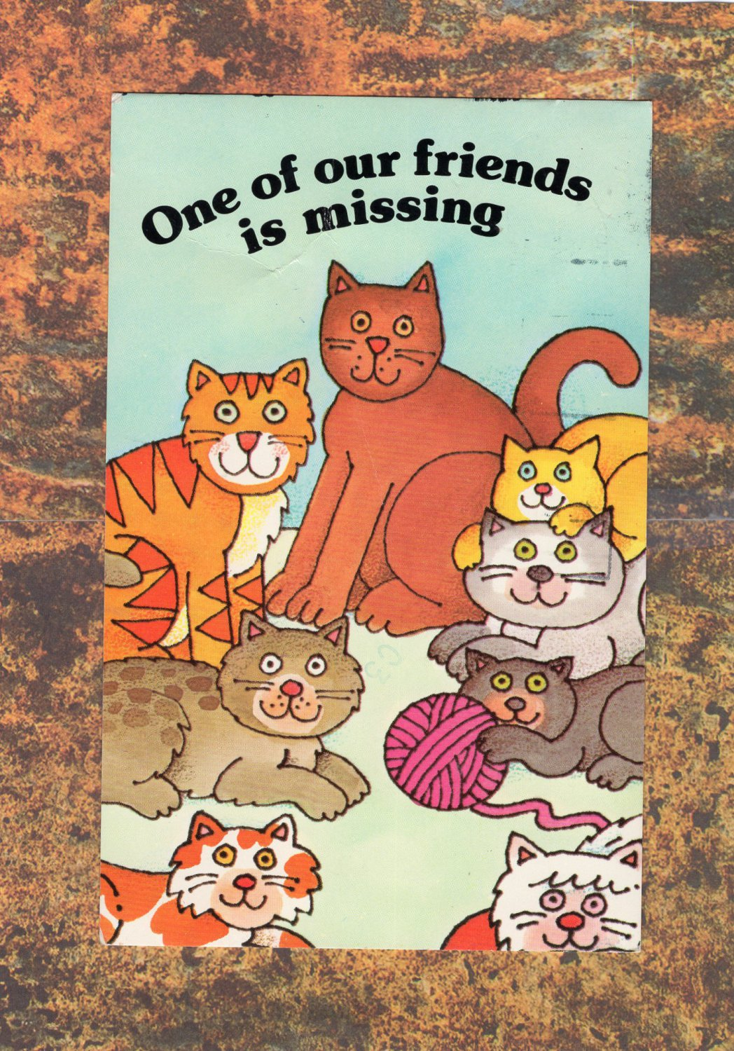 One of Our Friends Is Missing Humor/Funny Cats Postcard Felines Staring Wide-Eyed