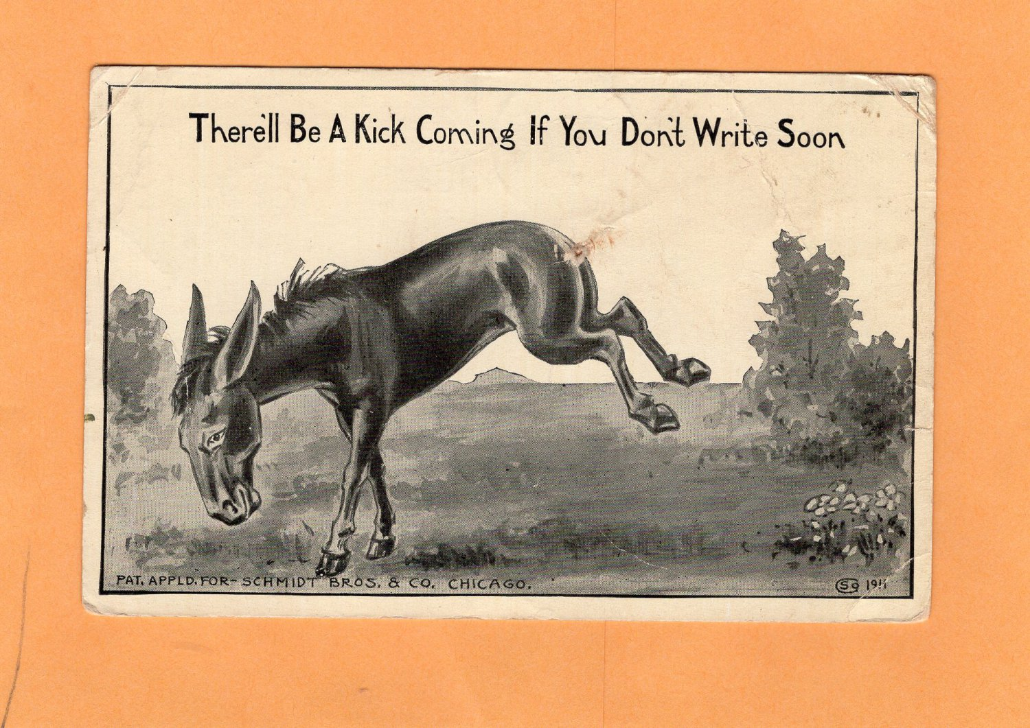 Kicking Mule Antique / Vtg Postcard, Donkey, Novelty, Burro, Humor, Missing Tail