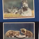 Two Mainzer Cats, Vintage Postcards, Animals, Felines, Pets, Fuzzy Kittens