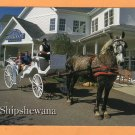 Horse and Riegsecker Carriage Postcard Shipshewana, Indiana