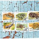 Kyrgsyzstan 1996 Postage Stamps Set of Six, Snakes, Lizards, Reptiles, Wildlife