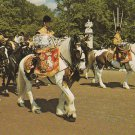 Drum Horses London Postcard Chrome Mounted Massed Bands