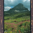 Mt. Reynolds Beautiful Color Postcard, Glacier National Park, Montana
