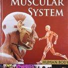 Muscular Systemhuman Body [Mar 01, 2011] Pegasus