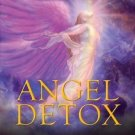 Angel Detox: Taking Your Life to a Higher Level Through Releasing Emotional,