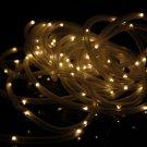 Waterproof 100LED Solar Power LED String Light