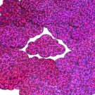 Fuchsia Pink Sequin Cloud Glitter Hologram 1.5 inch Large Couture Paillettes