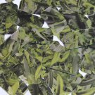 "Sequin Rectangle 1.5"" Lime Green Silver Bird Feathers Print Metallic"