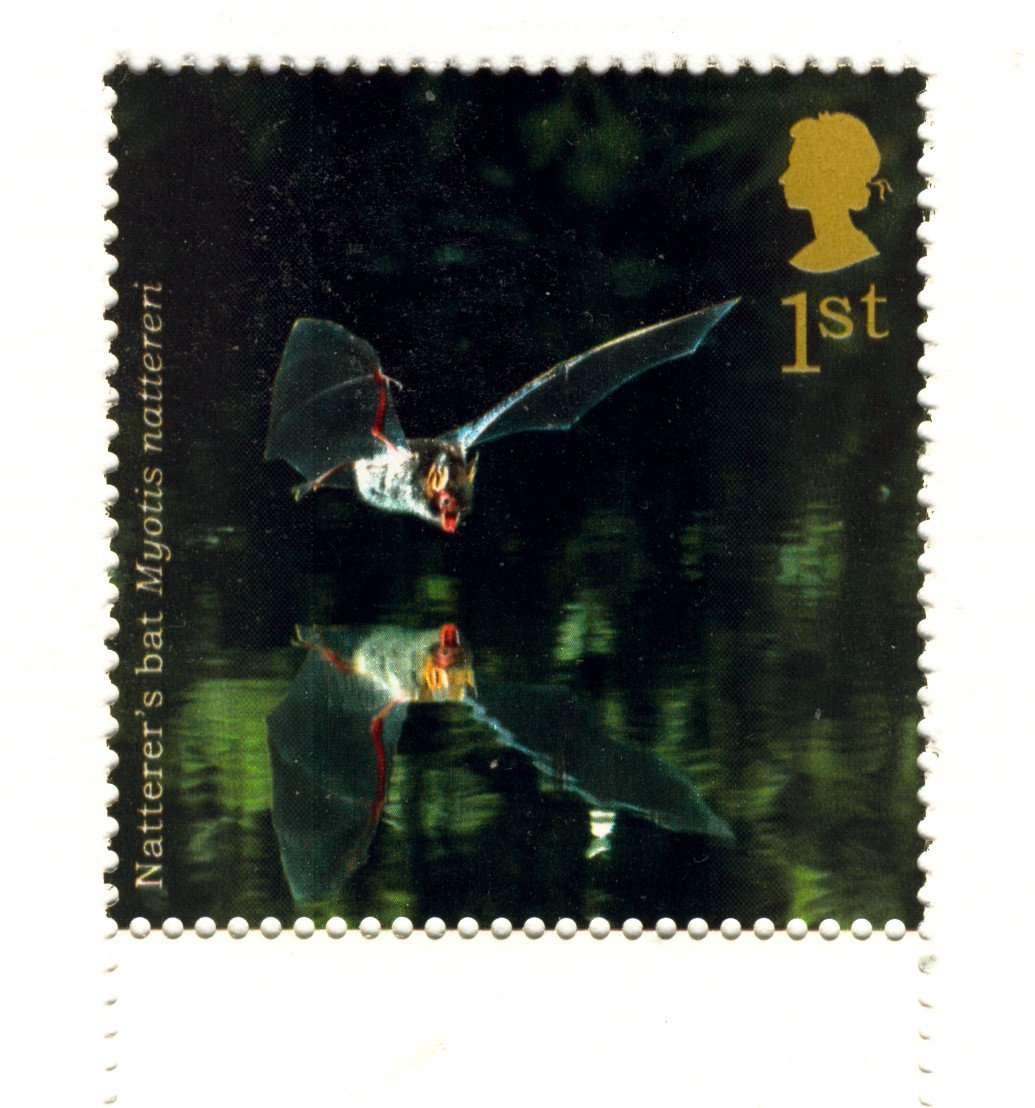 Animals on Stamps - Natterers Bat 1st Class Royal Mail Stamp NHM at Face Value