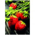Strawberries Postcard Sent to You in the Mail Using a Pictorial GB Post and Go Stamp