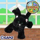 Webkinz Black Cat Halloween Seasonal Limited Edition