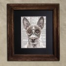 Dictionary Print: Complacent Portuguese Hound, Steampunk Dog Print, Art Print