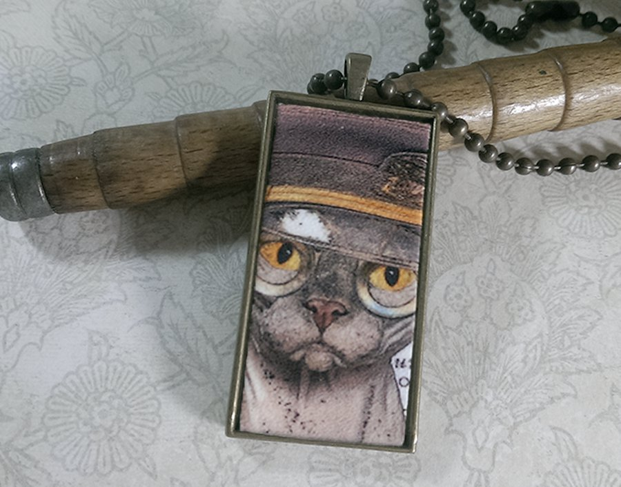 Steampunk Necklace: Brass Rectangle, Steampunk Cat Pendant - Militant Chinese Hairless Cat