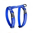 RC Pet Products 75405003 Primary Collection Kitty Harness, Large