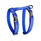 RC Pet Products 75403003 Primary Collection Kitty Harness, Small