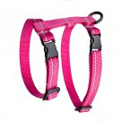 RC Pet Products 75404014 Primary Collection Kitty Harness, Medium