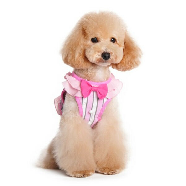 Dogo SnapGO Sweetbow Lady Harness - Pink