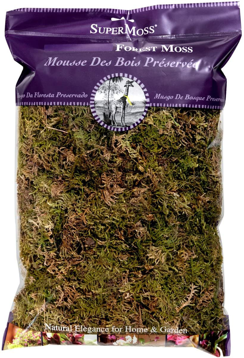 SuperMoss (21577) Forest Moss Dried, 200 in3 Bag (Appx. 8oz) Natural Dried
