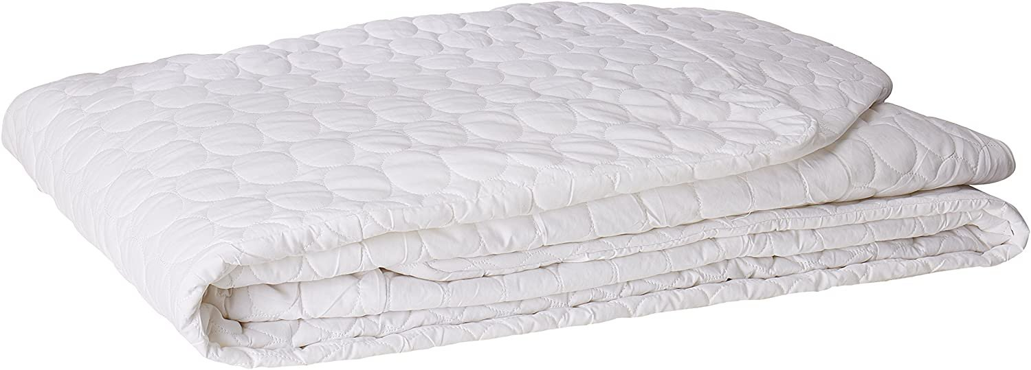 Remedy Bed Bug Dust Mite Cotton Mattress Protector, Queen Queen