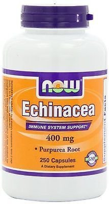 ECHINACEA PURP 400mg  100 CAPS By Now Foods