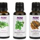 NOW Essential Oils 1 fl. oz 30 ml 3 Pcs Set Rosemary,Cinnamon Cassia,Peppermint